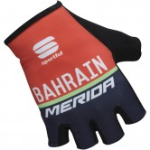 Pro Race Team Bahrain 2017 Red / Blue
